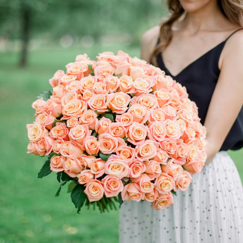 101 роза Мисс Пигги с доставкой