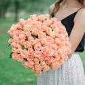 101 роза Мисс Пигги купить