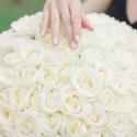 101 белая роза (Россия) купить