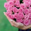 """Букет """"51 розовая роза"""" купить"""
