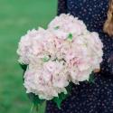 Букет из 5 нежно-розовых гортензий
