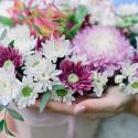 Букет в коробке с хризантемами и альстромериями заказать