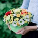 Коробка с хризантемами, розой и герберами купить