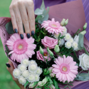 Букет с розовыми герберами, хризантемами и лизиантусом заказать