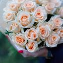 Букет из 25 кремовых роз (Россия) купить