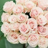 Букет из 25 роз Pink Mondiale (Эквадор) заказать