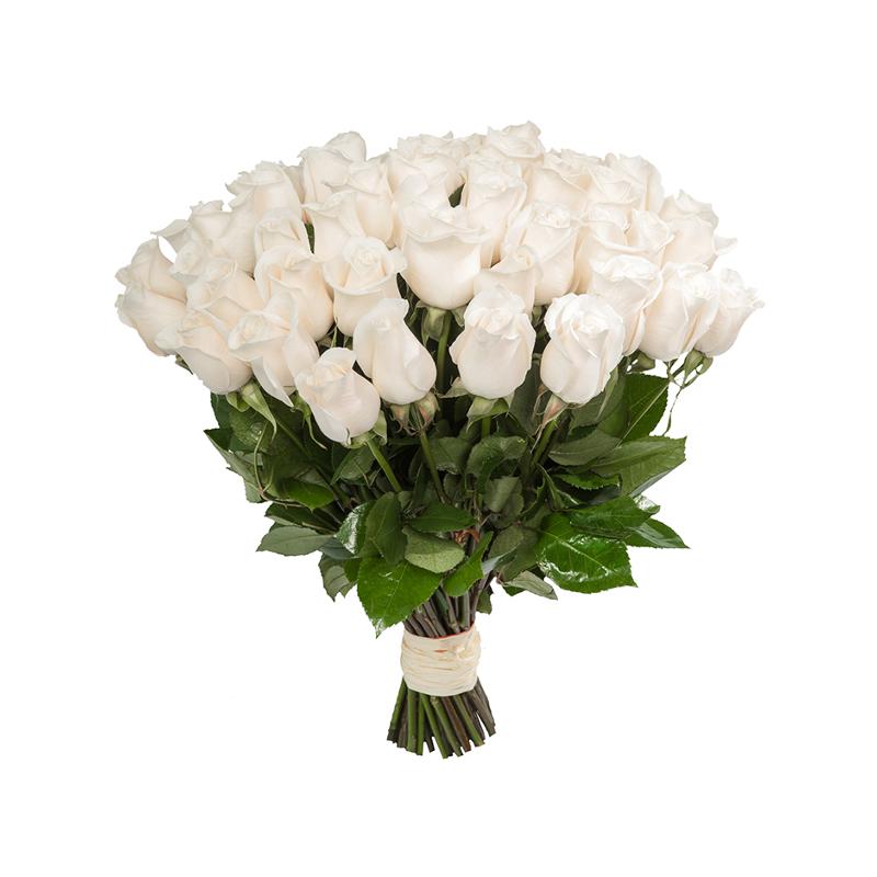"""Букет """"51 белая роза"""" (Эквадор) с доставкой"""