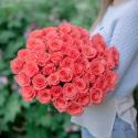 51 коралловая роза с доставкой