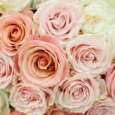 Букет из 25 роз нежный микс (Эквадор) купить