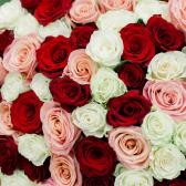 Букет из 101 розы микс 80см (Эквадор)