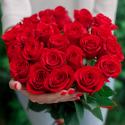 Букет из 25 крупных красных роз 60см Freedom (Эквадор)