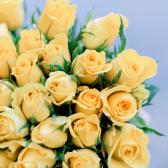 51 желтая Кенийская роза купить