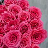 Букет из 25 малиновых роз Pink Floyd 70см (Эквадор) заказать