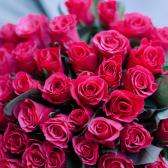 Букет из 51 малиновой розы 40см (Кения) купить