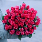 Букет из 51 малиновой розы 40см (Кения) заказать