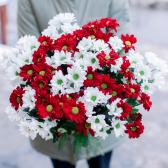 Букет из 15 кустовых красных и белых хризантем с доставкой
