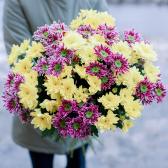 Букет из 15 желтых и малиновых кустовых хризантем с доставкой