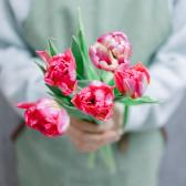 5 тюльпанов (микс) с доставкой