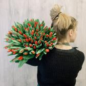 """Букет """"101 красный тюльпан"""" заказать"""