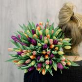 """Букет """"101 разноцветный тюльпан"""" заказать"""