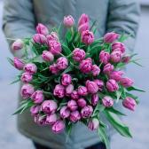 51 розовый тюльпан заказать