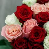 Букет из 101 розы микс (Эквадор) заказать