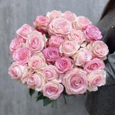 Букет из 25 розовых роз (Эквадор) с доставкой