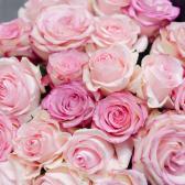 Букет из 25 розовых роз (Эквадор) купить