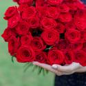 Букет из 51 красной розы (Россия) 50см