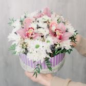 Коробка с розами, хризантемой и альстромерией с доставкой