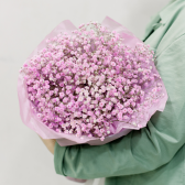 Букет из розовой гипсофилы с доставкой