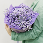 Букет из фиолетовой гипсофилы