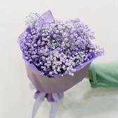 Букет из фиолетовой гипсофилы купить