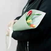 3 тюльпана (яркий микс) в упаковке купить