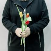 3 тюльпана (яркий микс) заказать