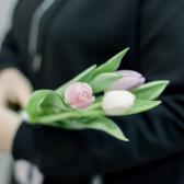 3 тюльпана (нежный микс) заказать