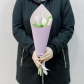 5 тюльпанов в упаковке (нежный микс) заказать