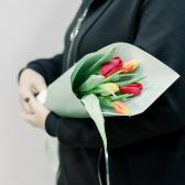 5 тюльпанов в упаковке (яркий микс) купить
