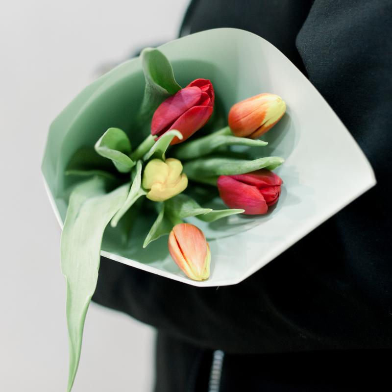 5 тюльпанов в упаковке (яркий микс) с доставкой