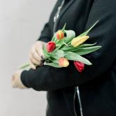 5 тюльпанов (яркий микс) купить