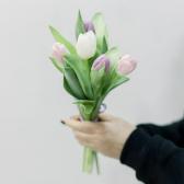 5 тюльпанов (нежный микс) с доставкой