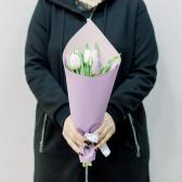 7 тюльпанов в упаковке (нежный микс) заказать