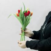 7 тюльпанов (яркий микс) с доставкой