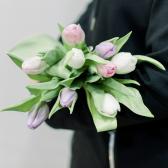 9 тюльпанов (нежный микс) купить