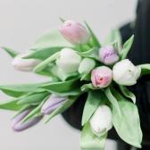 9 тюльпанов (нежный микс) заказать