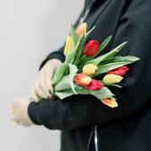 9 тюльпанов (яркий микс) купить