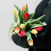 9 тюльпанов (яркий микс) заказать