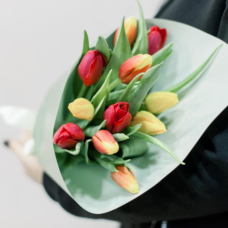 11 тюльпанов в упаковке (яркий микс) с доставкой