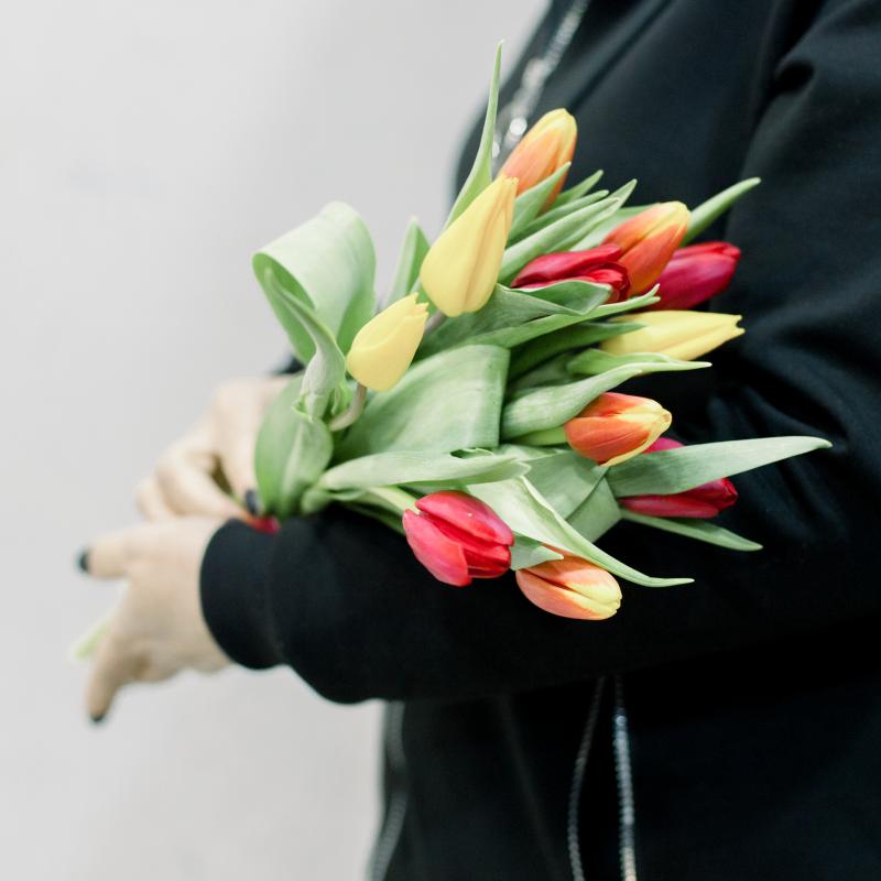 11 тюльпанов (яркий микс) с доставкой