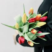 11 тюльпанов (яркий микс) заказать
